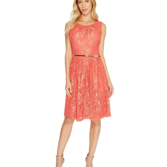 85261da099491 Ellen Tracy Dresses | Womens Coral Lace Elegant Dress | Poshmark